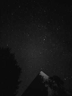 Fotografía en blanco y negro del cielo nocturno