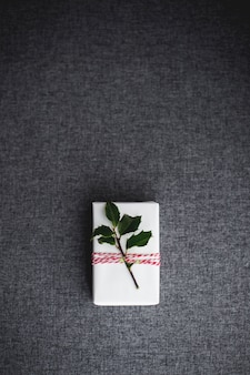 Fotografía cenital vertical de una caja de regalo de navidad blanca decorada con una pequeña rama con hojas verdes