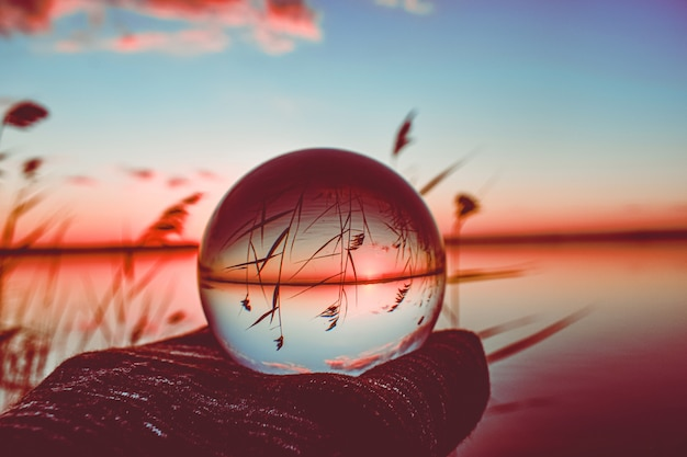 Fotografía creativa de bola de lente de cristal de un lago con vegetación alta alrededor