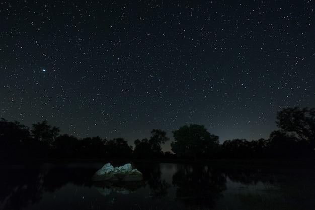 Fotografía nocturna en el área natural de aceituna.
