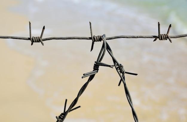 Fragmento de la valla de alambre de púas.