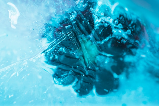 Frambuesas congeladas