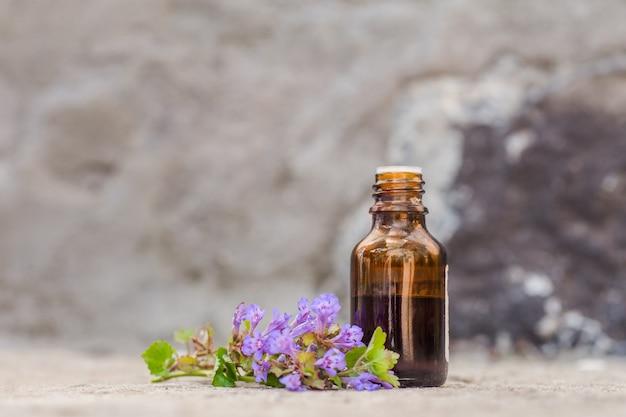 Frasco farmacéutico de medicamentos de glechoma hederacea