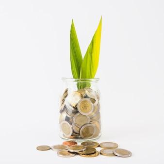 Frasco de vidrio con monedas y planta