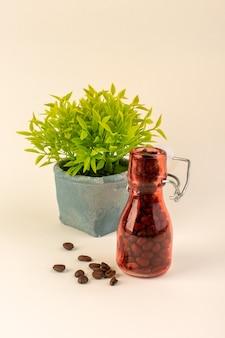 Un frasco de vista frontal con café y planta verde en la mesa rosa semilla de flor de color café
