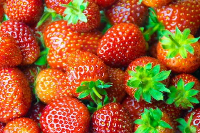 Fresa roja y hojas de fruta sana