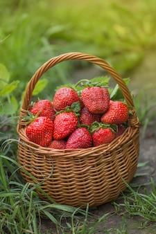 Fresas frescas, dulces y jugosas en una mesa de madera