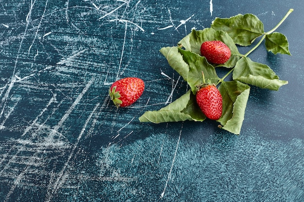 Fresas en hojas verdes.