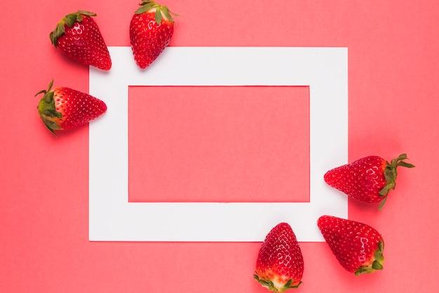 Fresas jugosas brillantes en el marco blanco en un fondo rosado