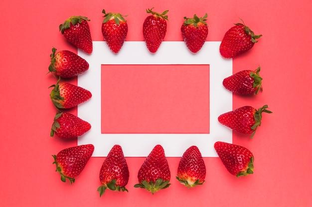 Las fresas jugosas maduras se alinearon en el marco blanco en fondo rosado