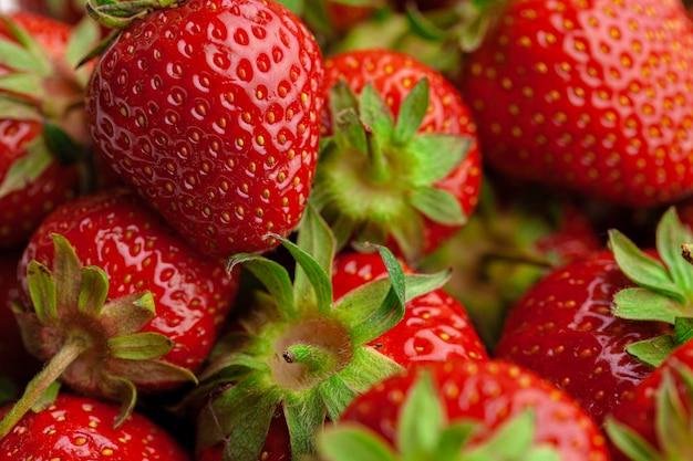 Fresas maduras y dulces. bayas maduras de verano. de cerca.
