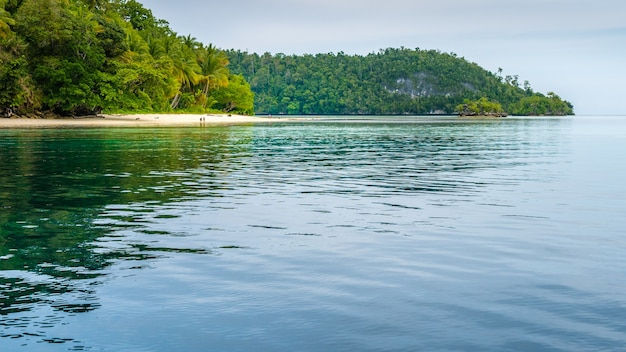 Friwen island en el frente y la pared, papúa occidental, raja ampat, indonesia. famoust diver spot