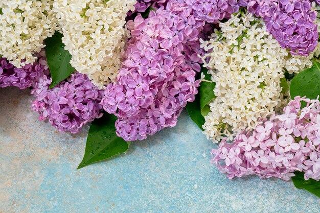 Frontera de coloridas flores lilas en azul pastel.