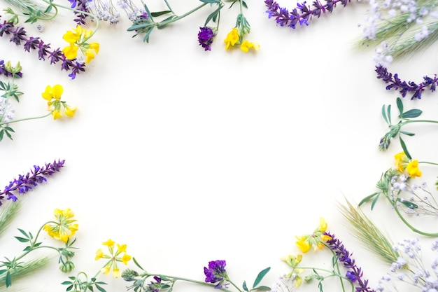 Frontera de flores aislada sobre fondo blanco