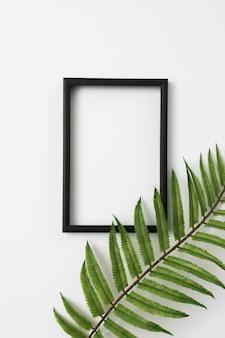 La frontera de madera del marco de la foto y el helecho deja la rama en el fondo blanco