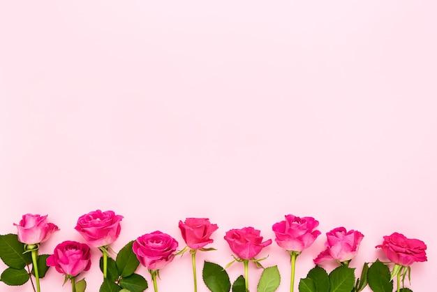 Frontera de rosas rosadas sobre fondo rosa