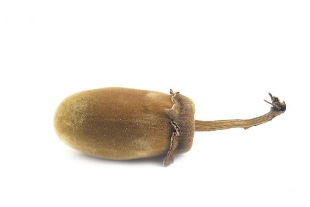 Fruta del baobab africano o pan de mono sobre un fondo blanco