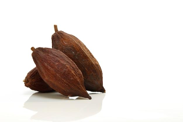 Fruta del cacao en el fondo blanco