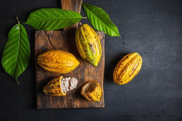 Fruta de cacao fresca sobre un fondo negro