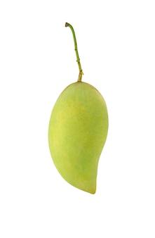Fruta de mango verde aislado sobre fondo blanco. fruta tropical en tailandia