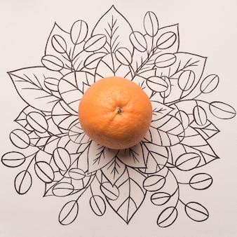 Fruta naranja sobre fondo floral de contorno