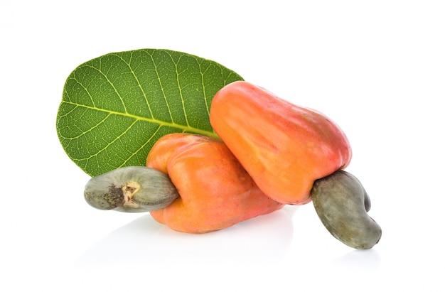 Fruta roja del anacardo aislada