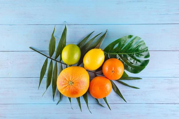 Frutas cítricas naranja, limón, pomelo, mandarina, lima en hojas de palma sobre fondo de madera azul
