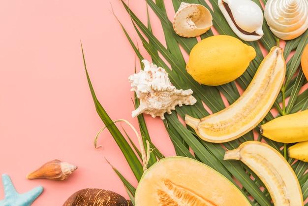Frutas tropicales y conchas en hojas de palmera.