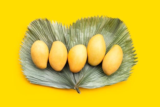 Frutas tropicales en hojas de palma secas sobre superficie amarilla