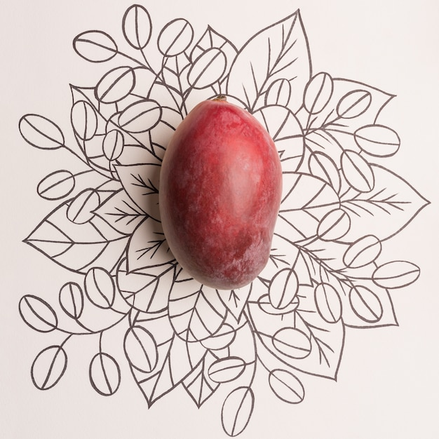 Fruto de mango sobre fondo floral de contorno