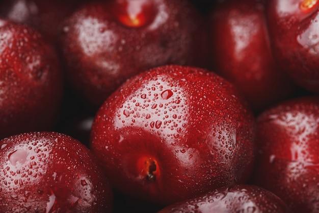 Los frutos del primer plano de cerezas con gotas de rocío
