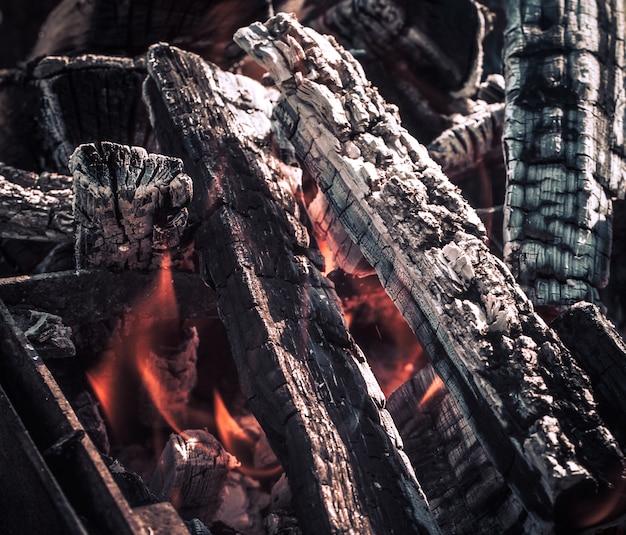 Fuego, llamas de ascua de madera para parrilla o barbacoa picnic, humo y leña al aire libre