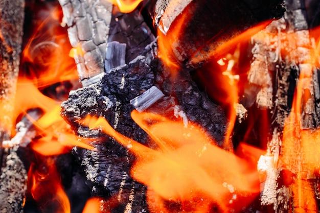 El fuego de la quema de leña con cenizas y llamas.