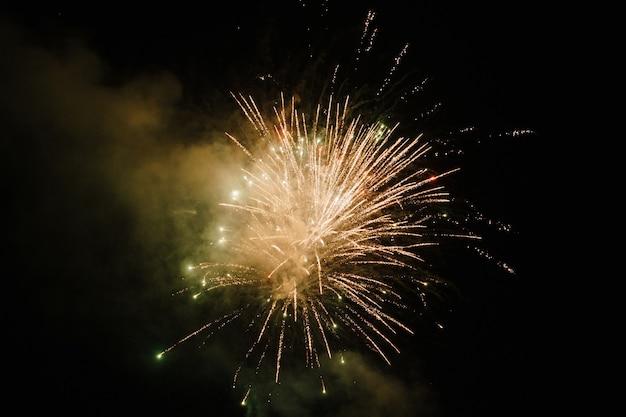 Fuegos artificiales brillantes explotan en el cielo nocturno