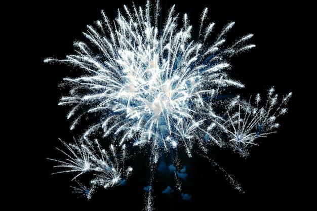 Fuegos artificiales de colores en el cielo nocturno. evento festivo