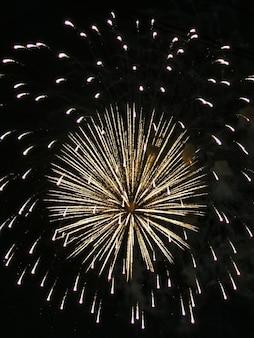 Fuegos artificiales, explosión sobre un fondo negro, fuegos artificiales festivos para el año nuevo, 4 de julio, cumpleaños. se puede utilizar como elemento de diseño para tus fotos.