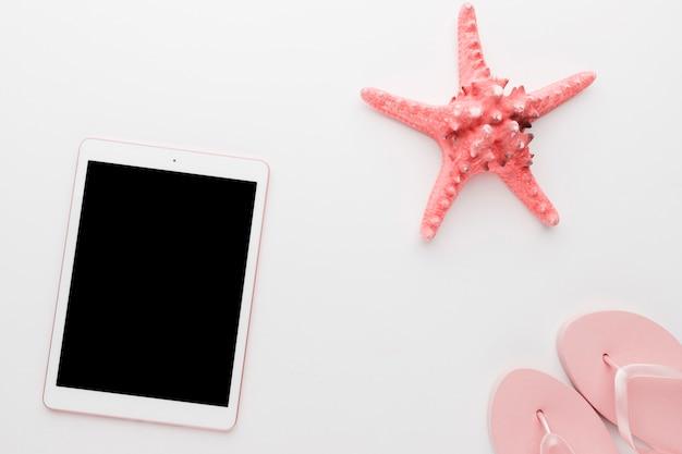 Gadget con estrellas de mar sobre fondo claro