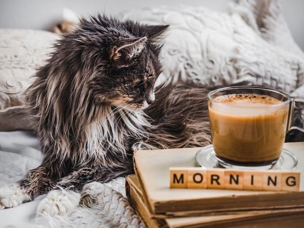 Gatito encantador y taza de café aromático.