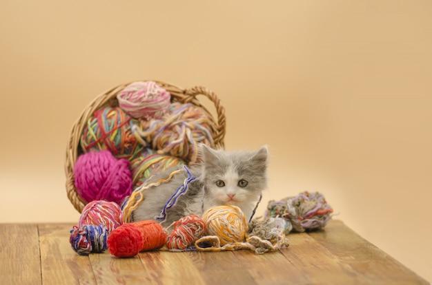 Gatito gracioso con un ovillo de tejer.