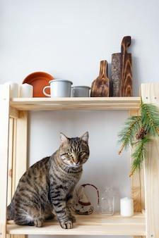 Gato atigrado se sienta en el estante de la cocina con platos y recuerdos navideños
