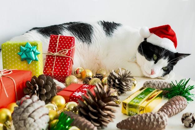 Gato blanco y negro con gorro de papá noel de navidad con adornos sobre una mesa