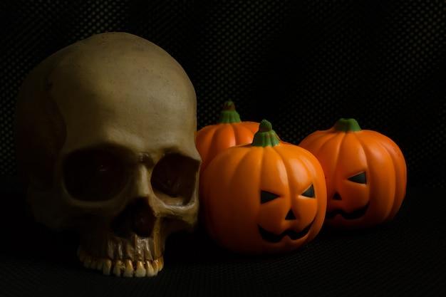 El gato y el cráneo de la calabaza de halloween en imagen de fondo negra del día de fiesta.