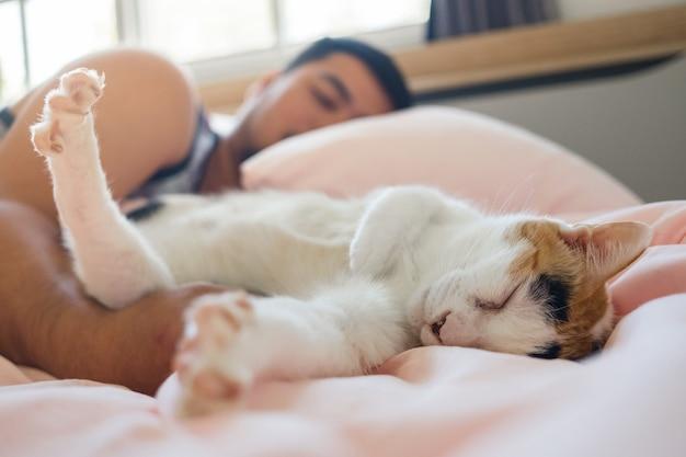El gato duerme cómodamente en el abrazo del amado ser humano.