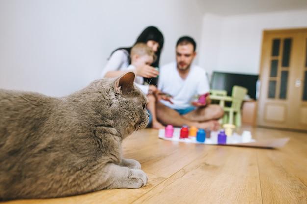 Un gato con una familia pinta papel en la habitación