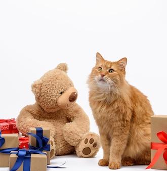 Gato jengibre adulto sentado en medio de cajas envueltas en papel marrón y atado con cinta de seda, regalos y un animal sobre un fondo blanco, tarjeta de felicitación de cumpleaños, día de san valentín
