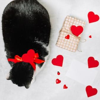 Gato con lazo cerca de caja actual y adorno de corazones.