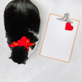 Gato con lazo cerca de portapapeles y adorno de corazón