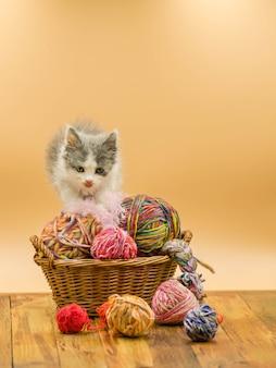 El gato mullido lindo está jugando con la bola de hacer punto. gato lamiendo los labios