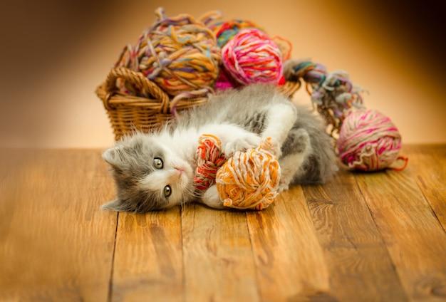 El gato mullido lindo está jugando con la bola de hacer punto.
