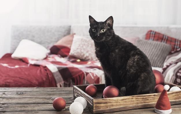 Gato negro con bola de navidad en la mesa de madera interior